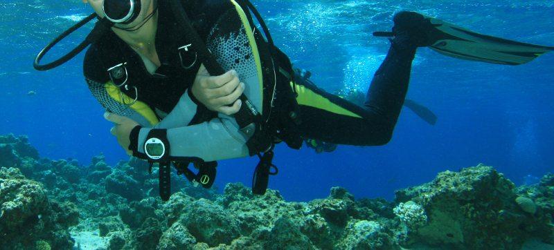 escursioni castiglione della pescaia subaque
