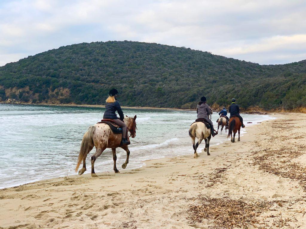 passeggiate a cavallo cala violina Agriturismo Castiglione della Pescaia, Il Maestrale