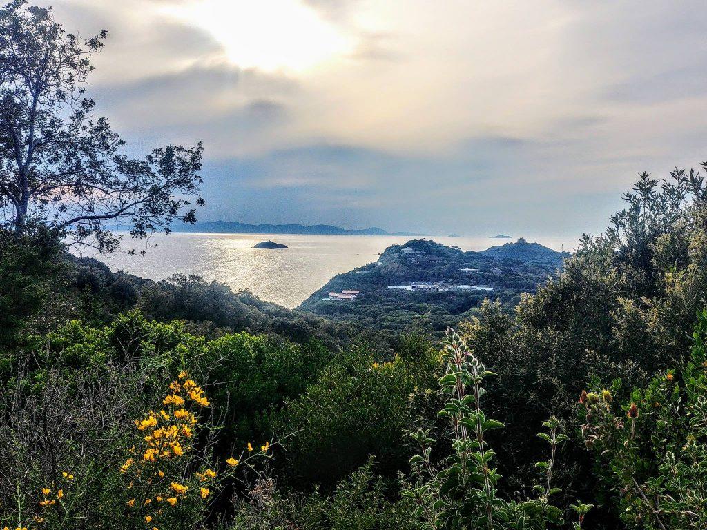Prenota adesso le tue vacanze in Maremma, Agriturismo il Maestrale Castiglione della Pescaia,