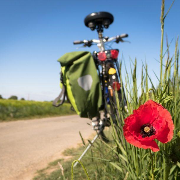cicloturismo in maremma percorsi il maestrale